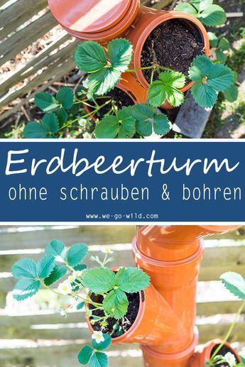 Erdbeerturm Selber Bauen In Nur 4 Schritten Zur Diy Erdbeersaule Erdbeerturm Erdbeeren Pflanzen Vertikaler Garten Diy