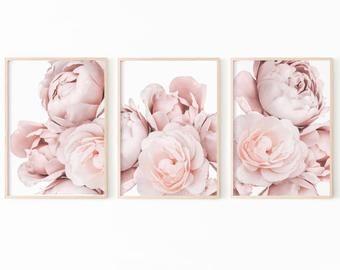 Pink Rose Print Etsy Botanical Print Set Pink Peonies Print Botanical Prints