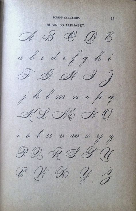 Where Worlds Collide: The Lost Art of Penmanship Flourish Calligraphy, Copperplate Calligraphy, Calligraphy Words, How To Write Calligraphy, Calligraphy Handwriting, Penmanship, Islamic Calligraphy, Calligraphy Letters Alphabet, Handwriting Alphabet