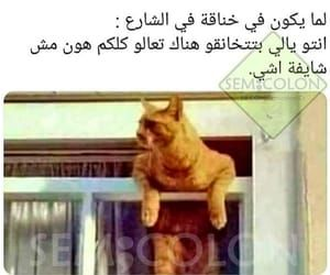 133 Images About ضحك On We Heart It See More About ض ح ك م ضحك And ت ح ش ي ش Funny Photo Memes Funny Joke Quote Fun Quotes Funny