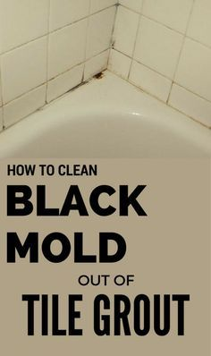 How To Clean Black Mold Out Of Tile Grout Clean Black Mold
