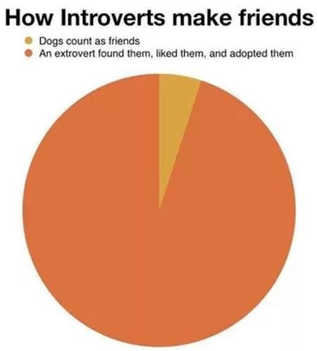 also sometimes group assignments where they're involuntarily paired with other introverts and bond over their discomfort in social situations