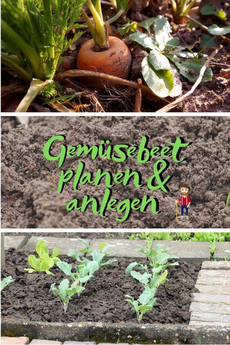 Gemusebeet Planen Gemusebeet Garten Bepflanzen Permakultur