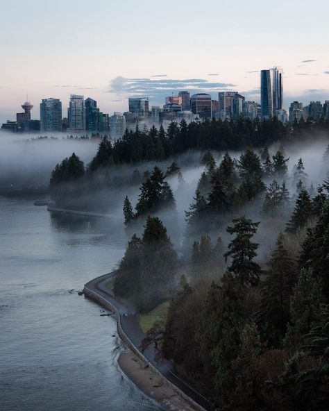 Stanley park sits right on the edge of Vancouver's downtown core.