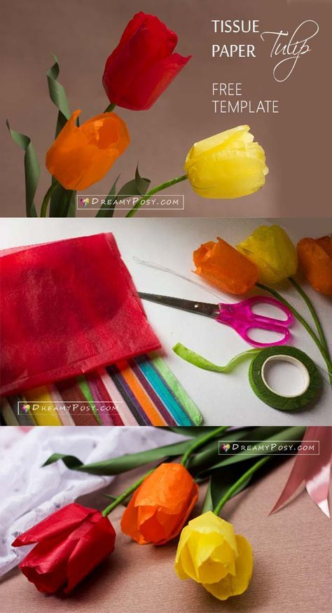 Tissue Paper Tulip Tutorial And Free Template Paperflowers Flowertutorial Flowertempla Tissue Paper Flowers Diy Paper Flowers For Kids Paper Flower Template