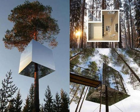 Mirror Cube Tree House Hotel Tree Houses Sweden And House