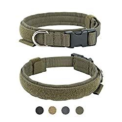 Best Dog Training Collar For Small Dogs In 2020 In 2020 Best Dog