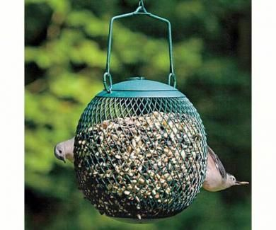 Pin by Michelle Constant on KHP | Bird feeders, Wild birds