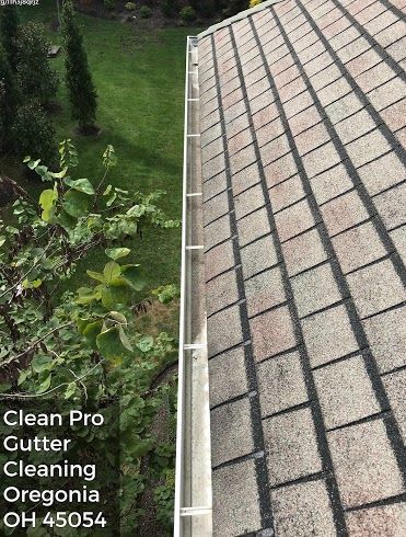 Clean Pro Gutter Cleaning Cincinnati Oh 45206 Cleaning Gutters Roof Repair Cost House Gutters