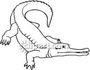 alligator outline cute alligator outline crocodile tattoo outline pinterest outlines alligators and tattoo outline