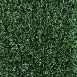 Foss Grasslands Indoor Outdoor Carpet 12 Ft Wide 44 Cents Per Sq Ft Carpetsremnantsforsale Ca Artificial Grass Artificial Grass Carpet Leaf Photography
