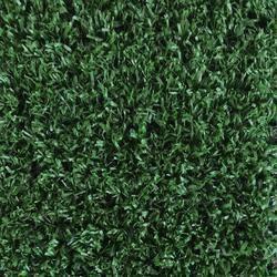 Foss Grasslands Indoor Outdoor Carpet 12 Ft Wide 44 Cents Per Sq Ft Carpetsremnantsforsale Ca Artificial Grass Artificial Grass Carpet Leaf Photography
