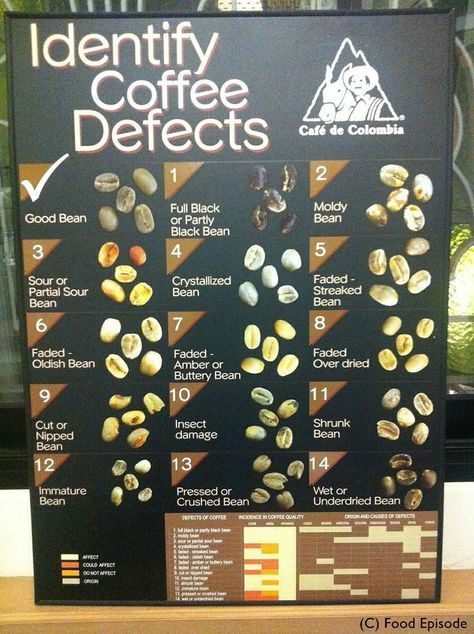 Coffee Bean Defects Buy Coffee Beans Coffee Type Types Of Coffee Beans