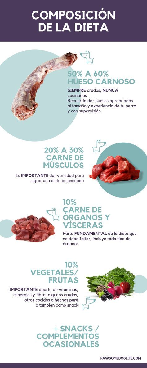 Aprende Todo Sobre La Alimentacion Natural Dieta Cruda Barf
