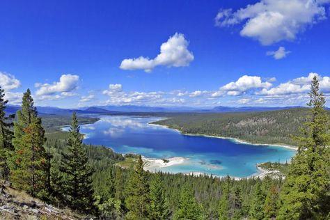 Great Bear Regenwald, Kanada | Kanada: British Columbia - Zu den Grizzlybären British Columbias