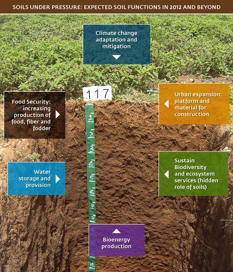 GSP chart Soil matters Pinterest