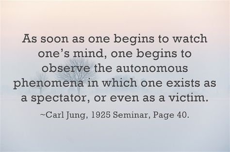 10642 best Carl Jung Quotations images on Pinterest - has no objection