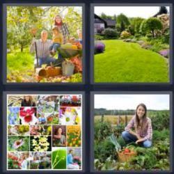 Soluciones 6 Letras 4 Fotos 1 Palabra Respuestas Actualizadas Quotes