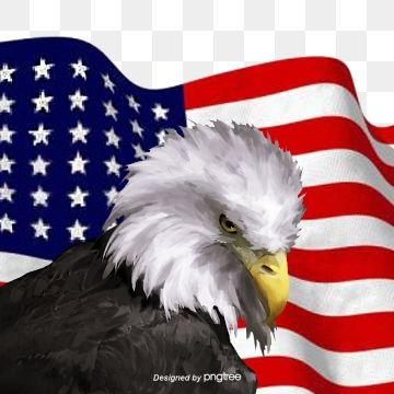 Hand Painted Elements Of The American Flag National Flag National Bird Head Portrait Png Transparent Clipart Image And Psd File For Free Download National Flag Flag Painting Graphic Design Background Templates