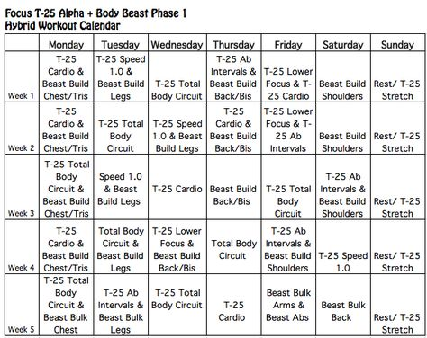 Which Body Beast Schedule Is Right For You Here You Will Find The