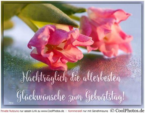 Coolphotos De Grusskarten Geburtstagskarten Beautiful Coolphotos