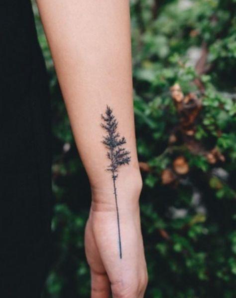 17+ Tattoo Tree Simple Pine
