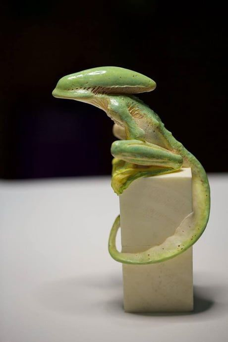 """This is a sculpture of a """"xenomorph tree frog"""