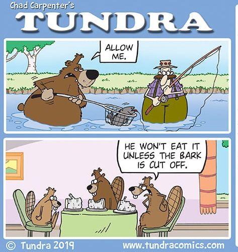 Pin By Ana Martinez On Tundra Comics Comics Tundra Chad