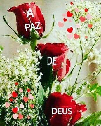 Conheca Sua Biblia De Capa A Capa Frases De Deus Bom Dia Com Flores