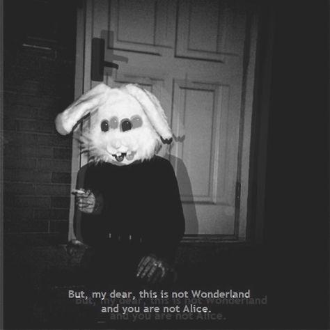 ... depressing depressing thoughts falice Alice In Wonderland sad sad quotes…