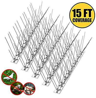 Amazon Com Remiawy Bird Spikes For Pigeons Small Birds Cat Anti Bird Spikes Stainless Steel Bird Deterrent Spikes Cover 15 Bird Deterrents Small Birds Spike