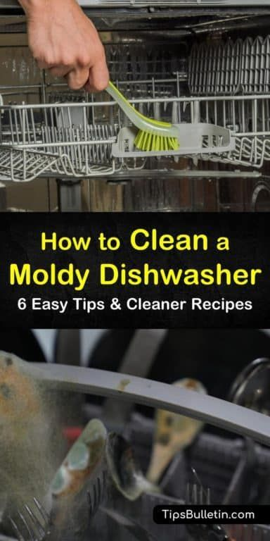 6 Easy Ways To Clean A Moldy Dishwasher Cleaner Recipes Cleaning Mold Cleaning Your Dishwasher