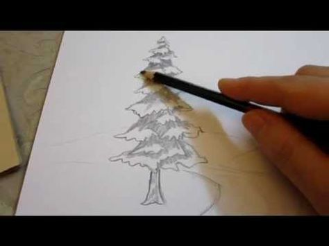 How To Shade An Evergreen Tree With Pencil How To Shade Tree Drawing Pencil Shading Techniques