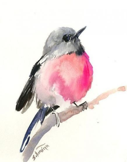 Best Robin Bird Painting Ideas Painting Bird Watercolour