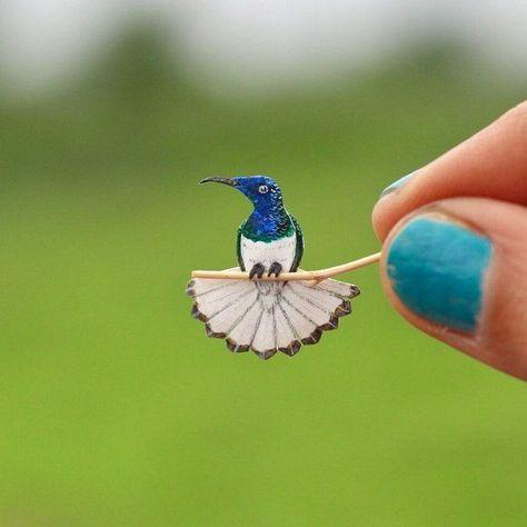 Hummingbird - Hummingbird art - Papercut bird - White necked jacobin -  - Original art - Miniature -