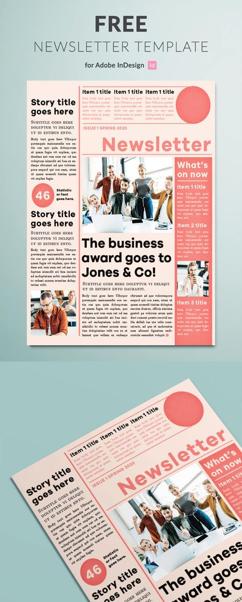 Modern Newsletter Template for InDesign | Free Download