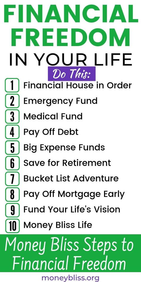 Money Bliss Steps to Financial Freedom   Money Bliss