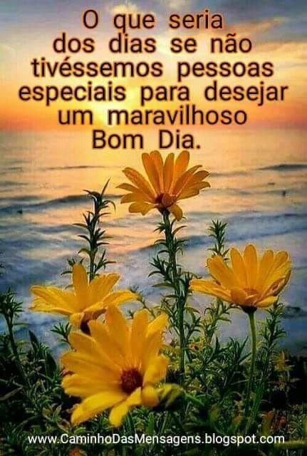 Bom Dia Com Imagens Mensagem Com Flores Mensagens Biblicas