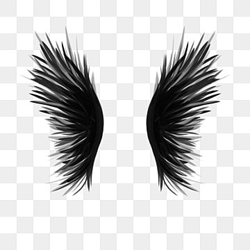 Beautiful Black Wings Free Png Transparent Layer Material Hand Drawn Wings Domineering Wings Pictures Angel Feather Wings Png Transparent Clipart Image And P Angel Feathers How To Draw Hands Angel Wings