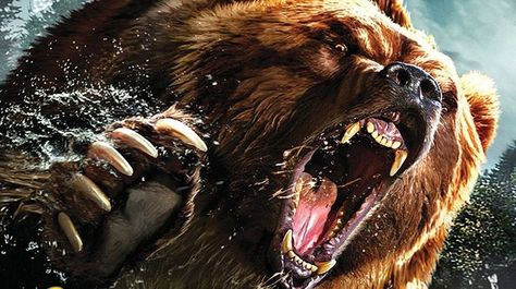 Here's Your Bear Attack Survival Guide - Fishing Advisors
