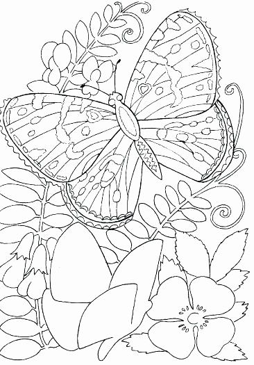 Butterfly Life Cycle Coloring Pages Best Of With Cocoon And Butterfly Coloring Page Flower Coloring Pages Coloring Pages