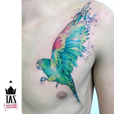 tattoodesign Kiko #parrot #parrottattoo...