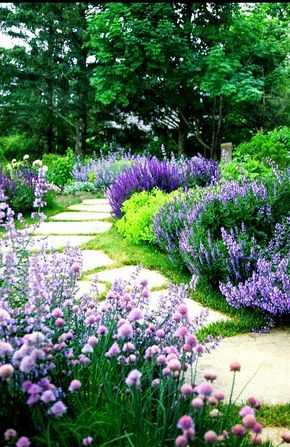 Garden Path Purple Flowers Landscaping Shrubs Garden Shrubs