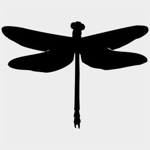Pin Dragonfly Clipart Black And White Dragonfly Silhouette Png Transparent Dragonfly Silhouette Dragonfly Clipart Clipart Black And White