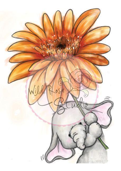 #hobbycraftseu #stempelset #verfgbar #studios #dahlia #letzte #bella #wild #rose #mit #aWild Rose Studio`s - A7 Stempel-Set Bella mit Dahlia- LETZTE VERFÜGBAR A7 Stempel-Set Bella mit Dahlia - Hobby-A7 Stempel-Set Bella mit Dahlia - Hobby-