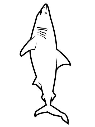 20 Great White Shark Coloring Pages Printable Coloring Pages In 2020 Shark Coloring Pages Coloring Pages Printable Coloring