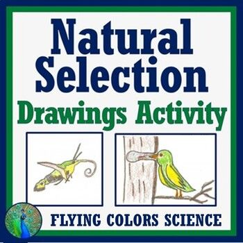 Effective This Worksheet Instructs Students To Design Organisms With Favorable And Unfavorable M Evolution Activities Life Science Activities Natural Selection Evolution and natural selection worksheet
