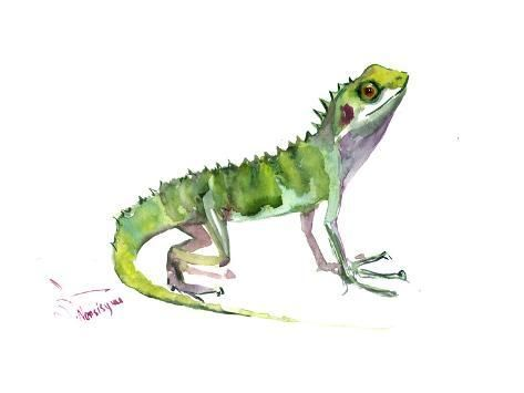 Art Print Nersisyan S Agama Lizard 12x16in In 2021 Lizard Art Prints Art Print Display