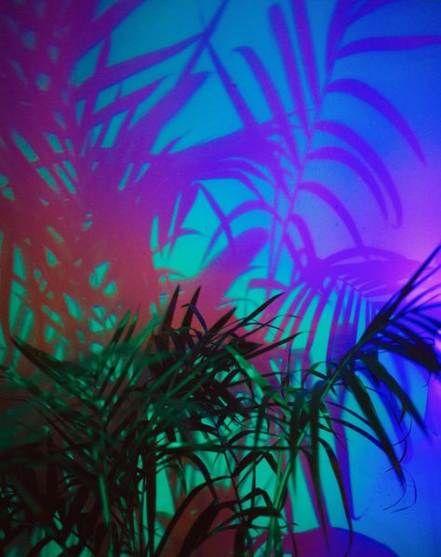 Super Plants Aesthetic Neon 45 Ideas Neon Aesthetic Plant Aesthetic Neon