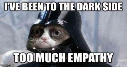39 Ideas Birthday Meme Star Wars Dark Side Cat Birthday Memes Funny Cat Memes Grumpy Cat Humor
